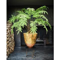 Silk-ka Plant Varen Groen | 156 cm