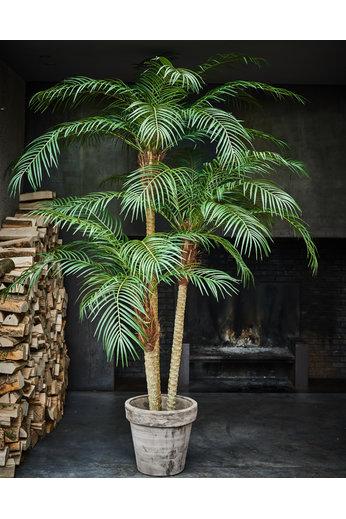 Silk-ka Arbre Palmier Vert Phoenix | 183 cm