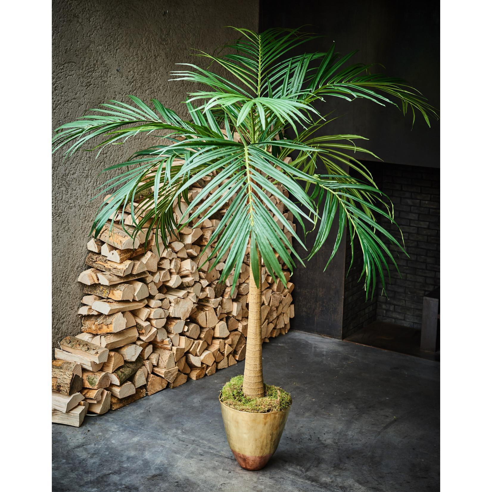 Silk-ka Palm Groen | 190 cm