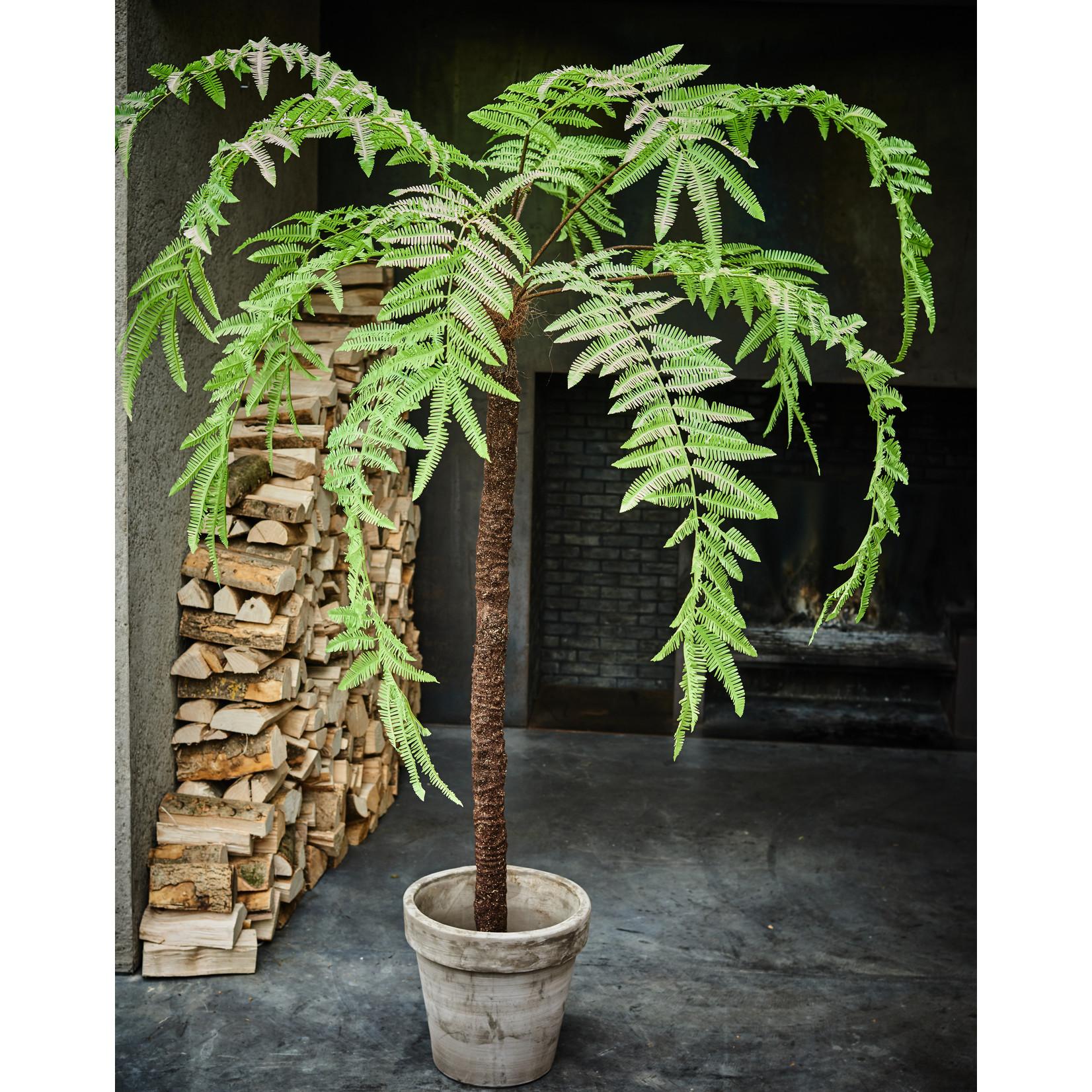 Silk-ka Plant Varen Groen   310 cm