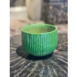 Domani KOBE | Forest Green S