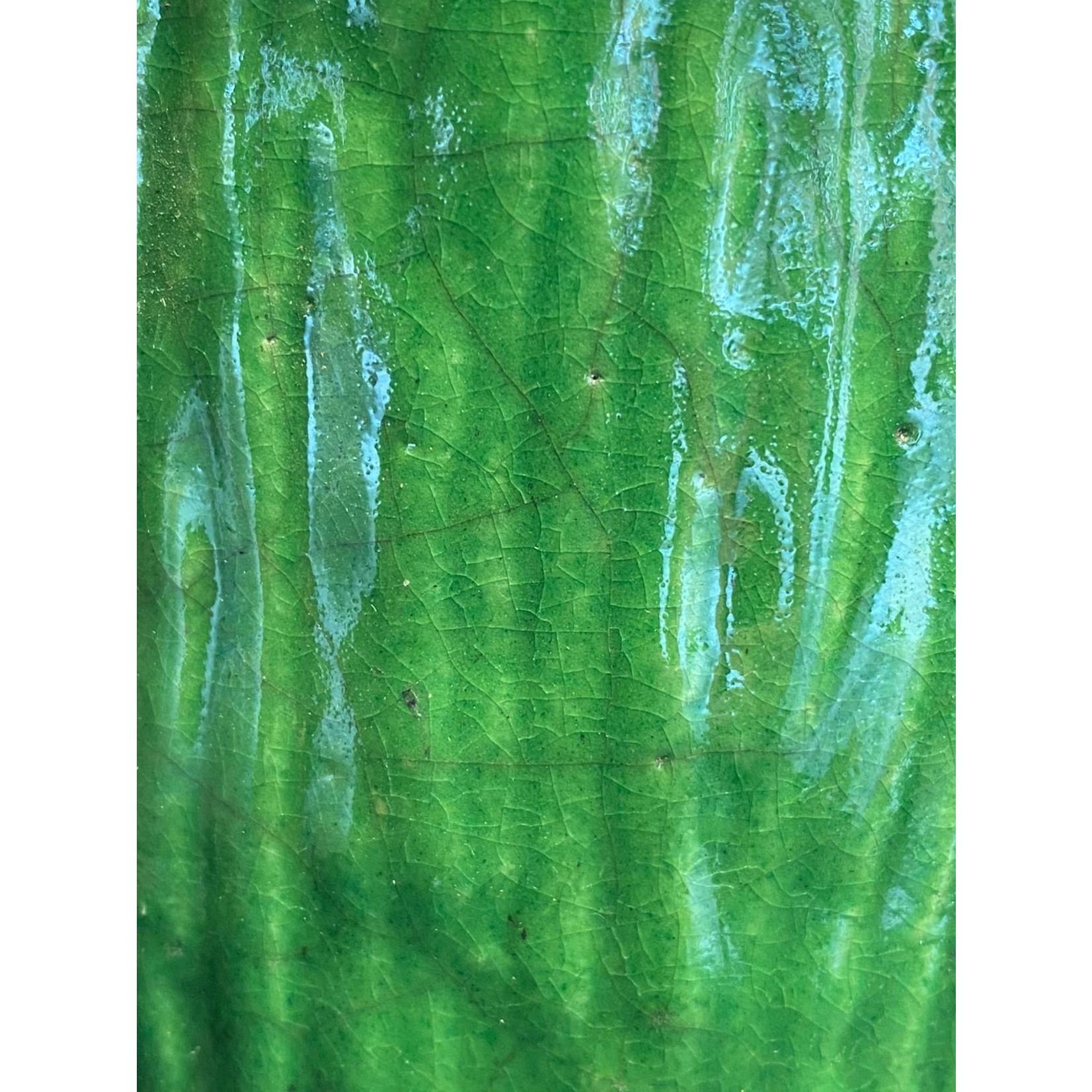 Domani KOBE   Vert forêt M