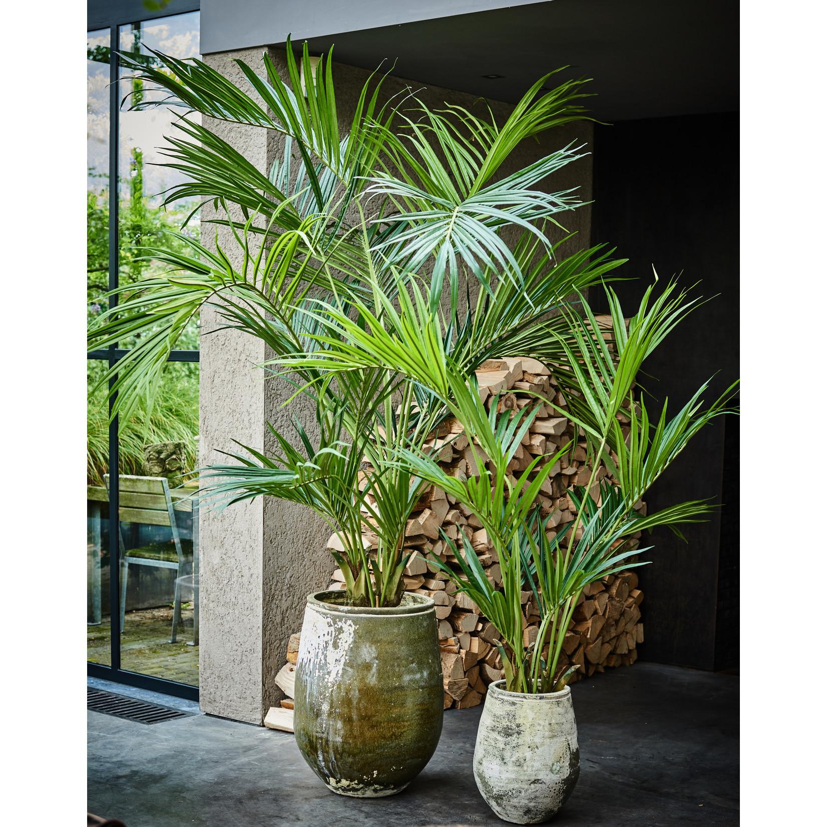 Silk-ka Palm Green | 150 cm