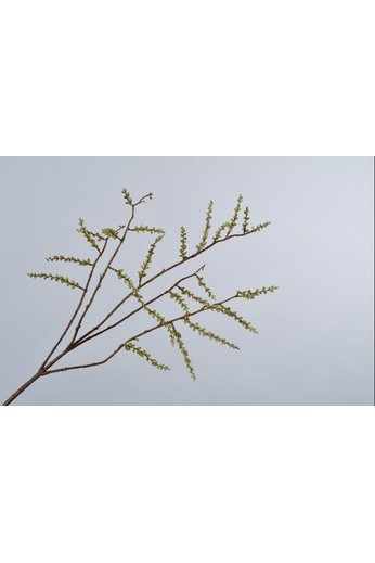 Silk-ka Willow Branch Green | 89 cm