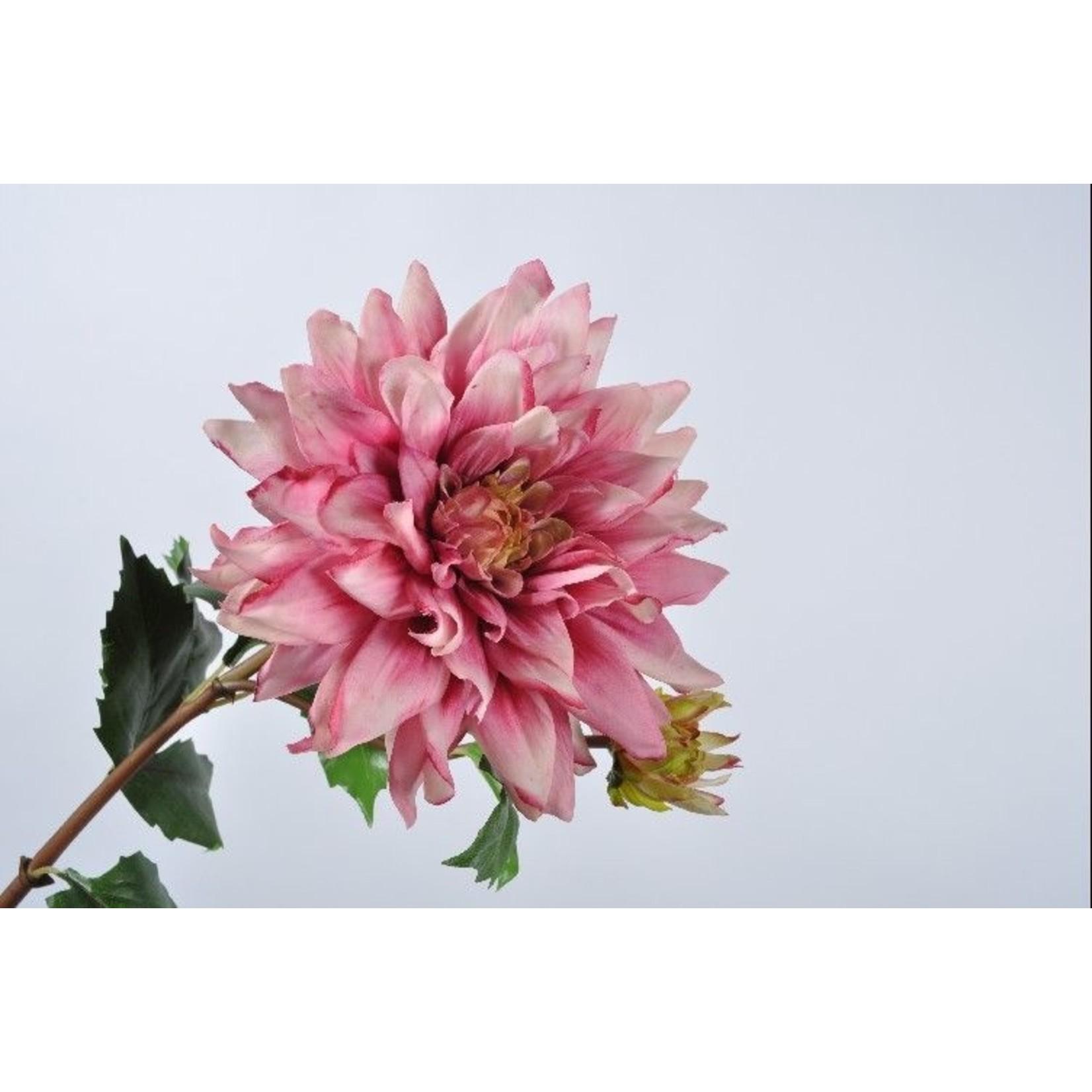 Silk-ka Dahlia acier rose | 75 cm