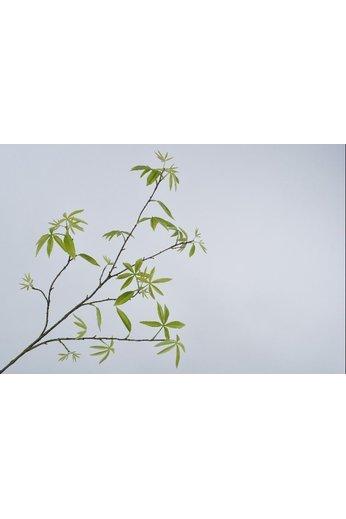 Silk-ka Bladtak Groen | 148 cm