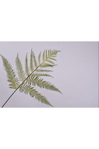 Silk-ka Branche de feuille Fern Green | 157 cm