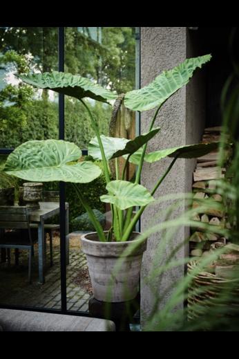 Silk-ka Plant Alocasia Groen | 124 cm