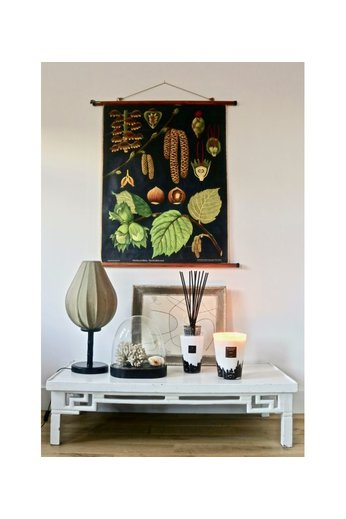 Baobab Collection Feathers Totem - 5L