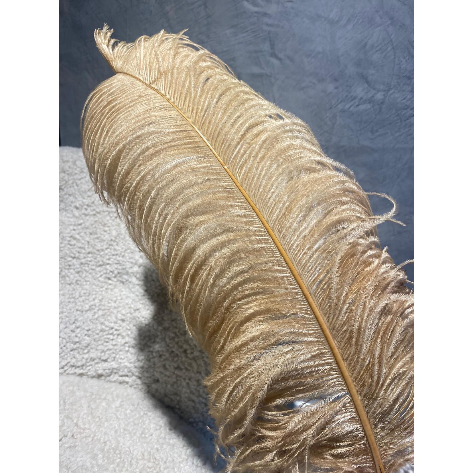 Struisvogelveer Goud - 50 cm