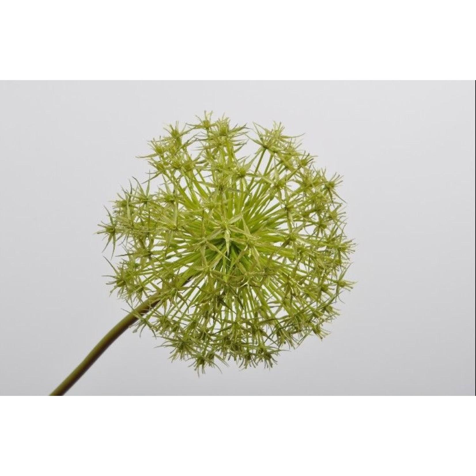 Silk-ka Allium Steel Green   104 cm