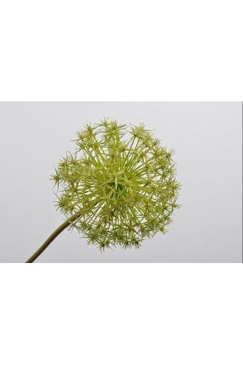 Silk-ka Allium Steel Green | 104 cm