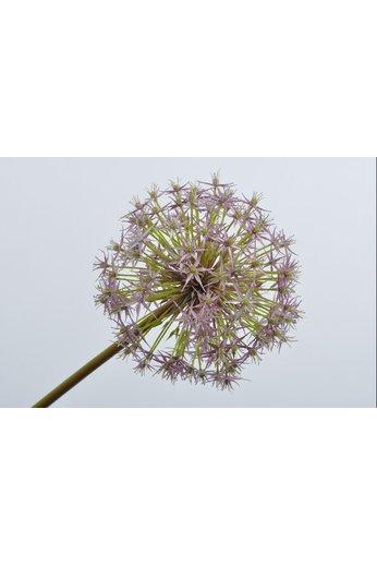 Silk-ka Acier Allium Violet | 104 cm