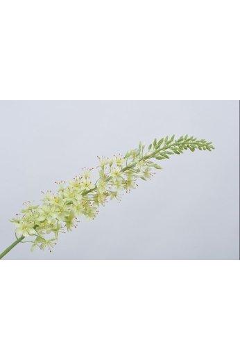Silk-ka Vert acier Eremurus | 107 cm