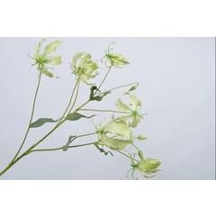 Silk-ka Branche Gloriosa Verte | 110 cm
