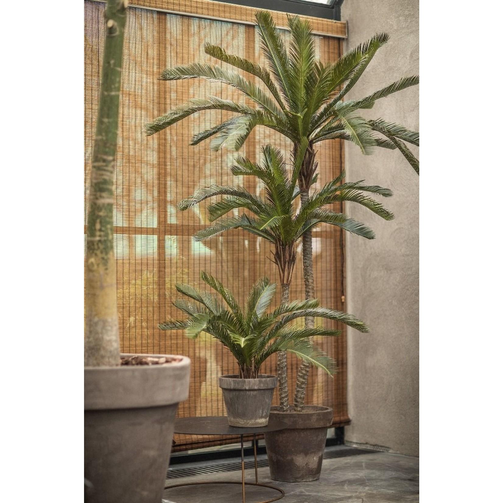 Silk-ka Plant Palm Green   180 cm