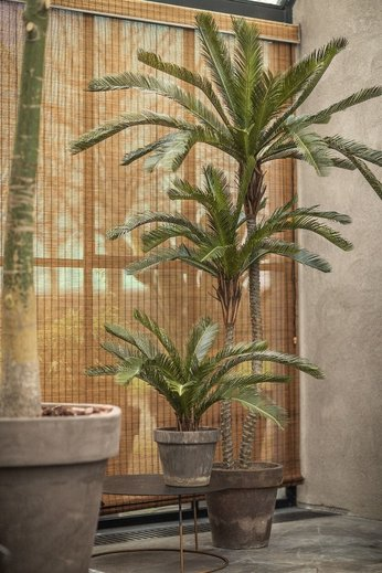 Silk-ka Plant Palm Green | 180 cm