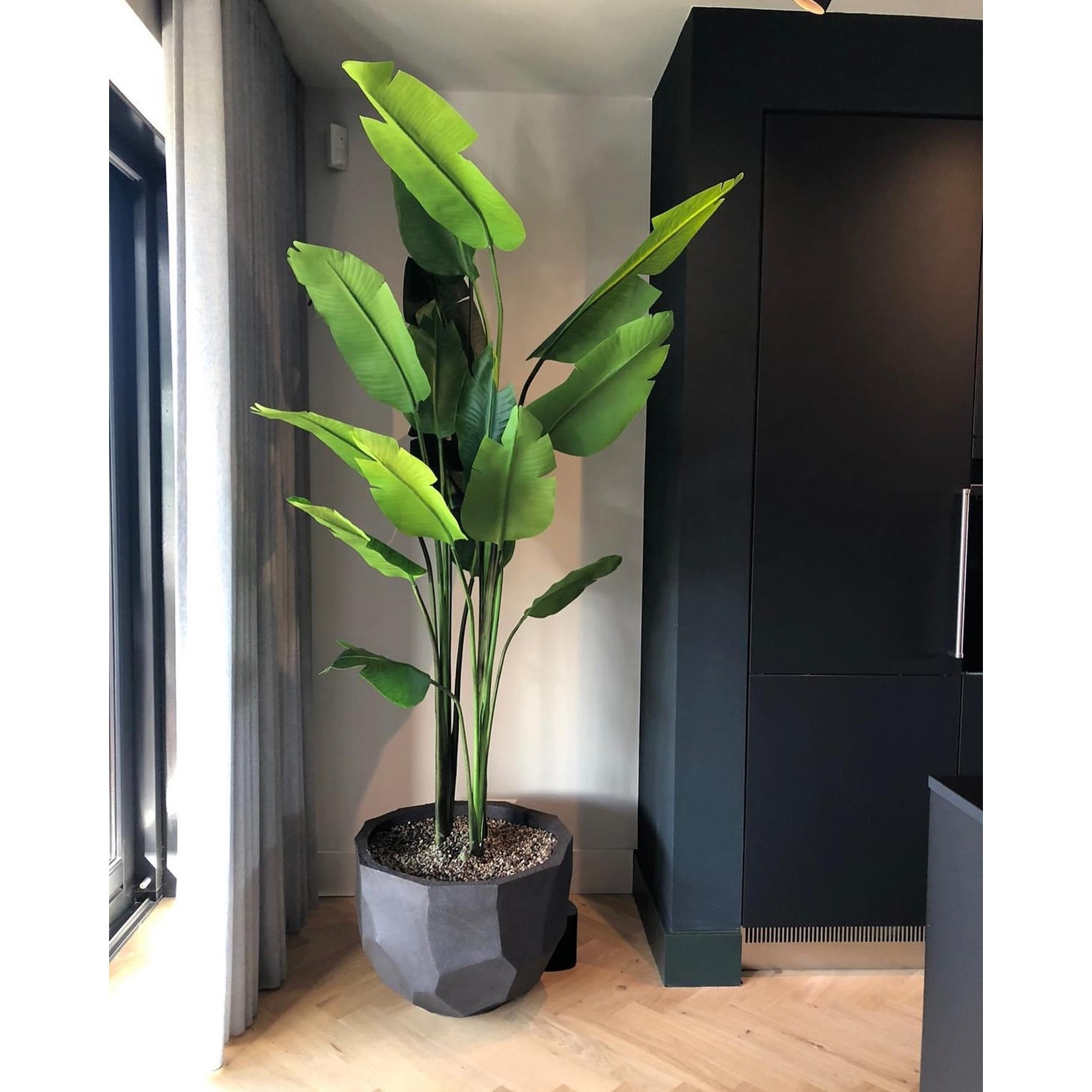 Silk-ka Strelitzia Green   243 cm
