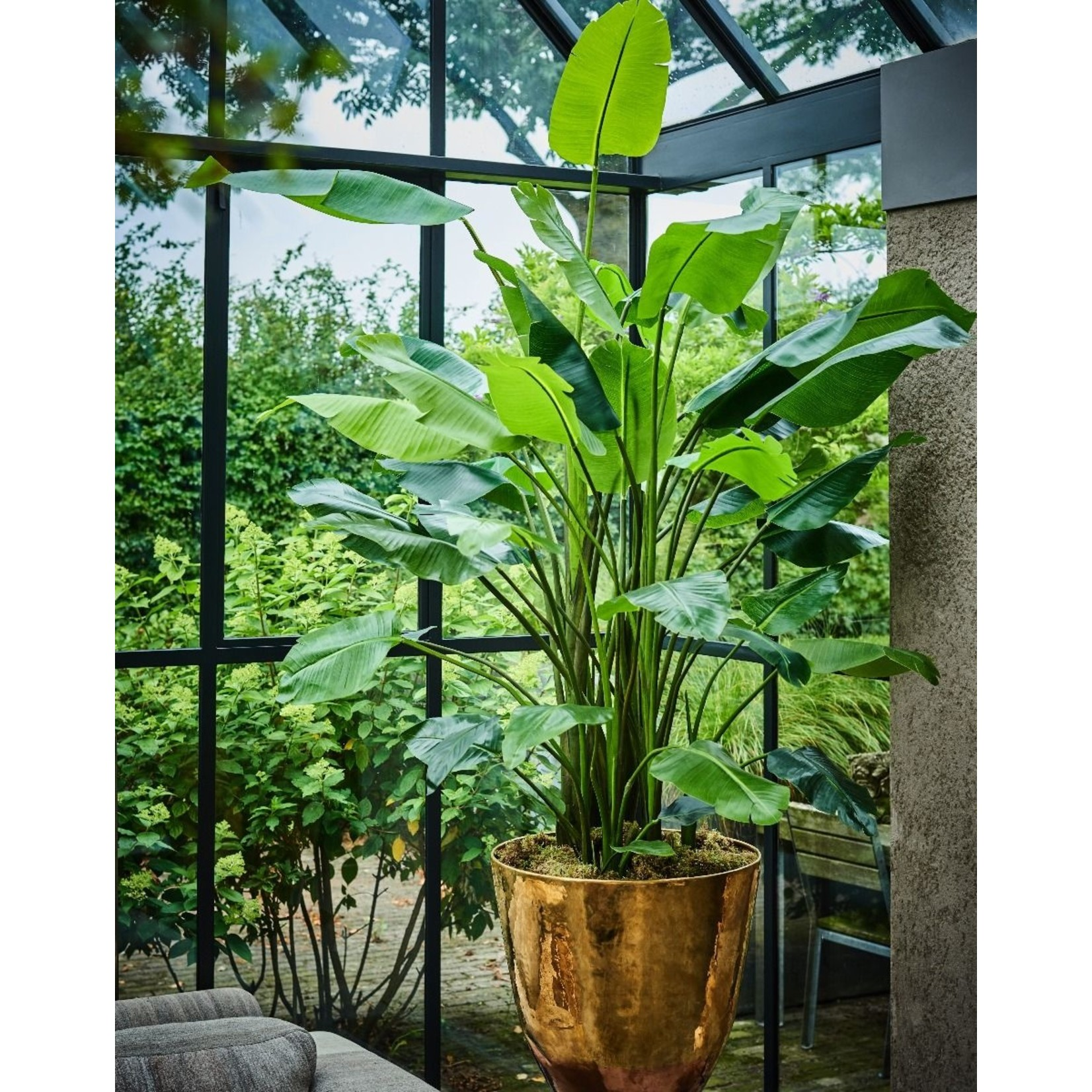 Silk-ka Strelitzia Groen   150 cm