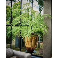 Silk-ka Plant Fern Green   150 cm