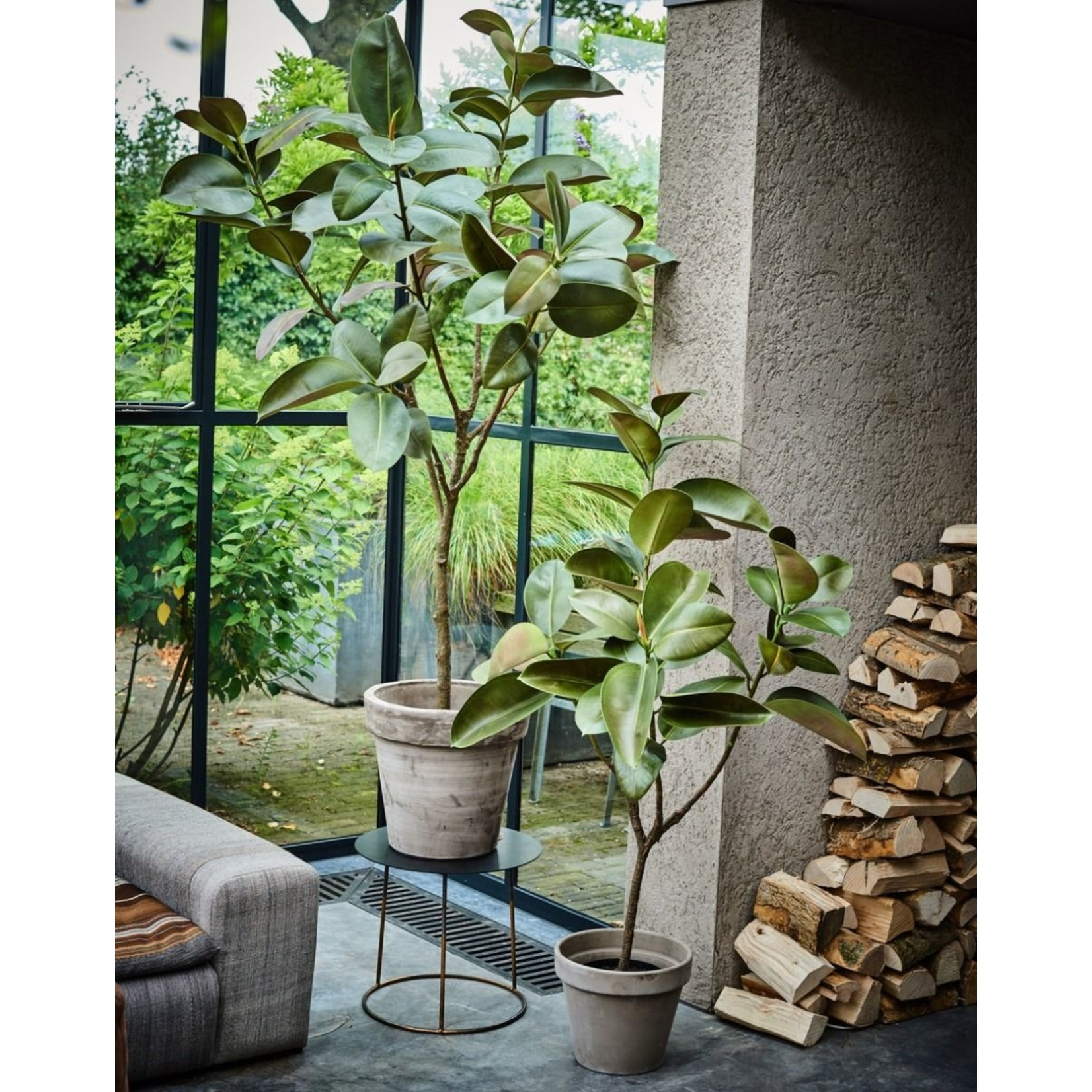 Silk-ka Plant Green | 151 cm