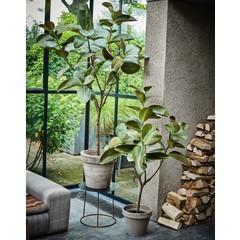 Silk-ka Plant Green   151 cm