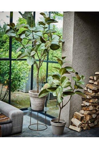 Silk-ka Plante verte | 151 cm