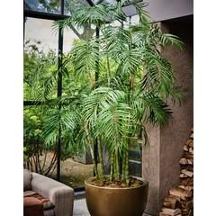 Silk-ka Plant Palm Green   210 cm
