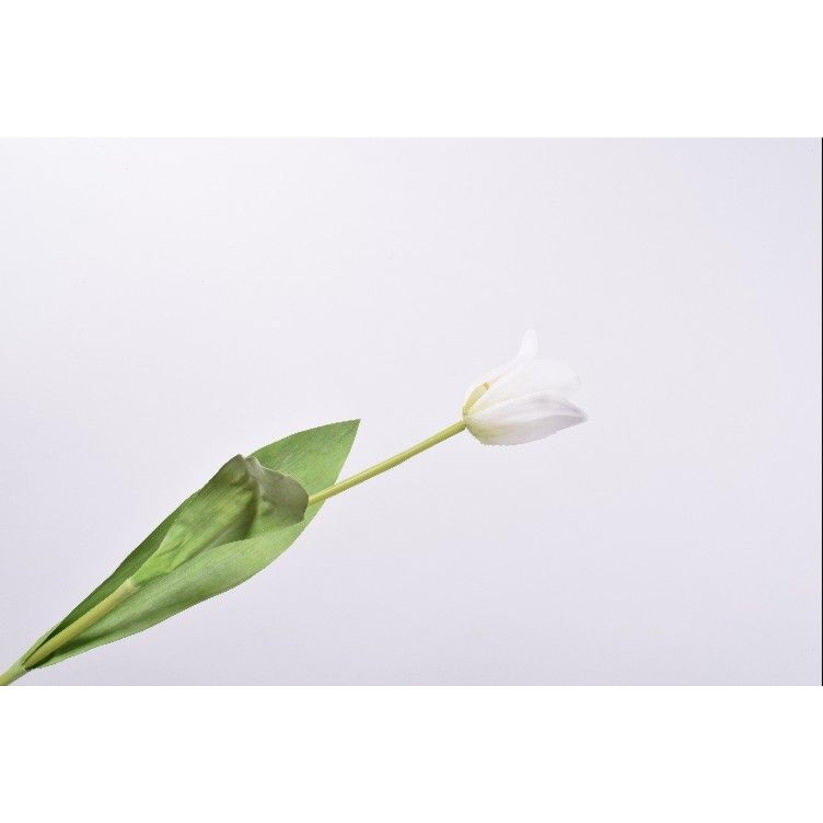 Silk-ka Tulip Stem White | 61 cm