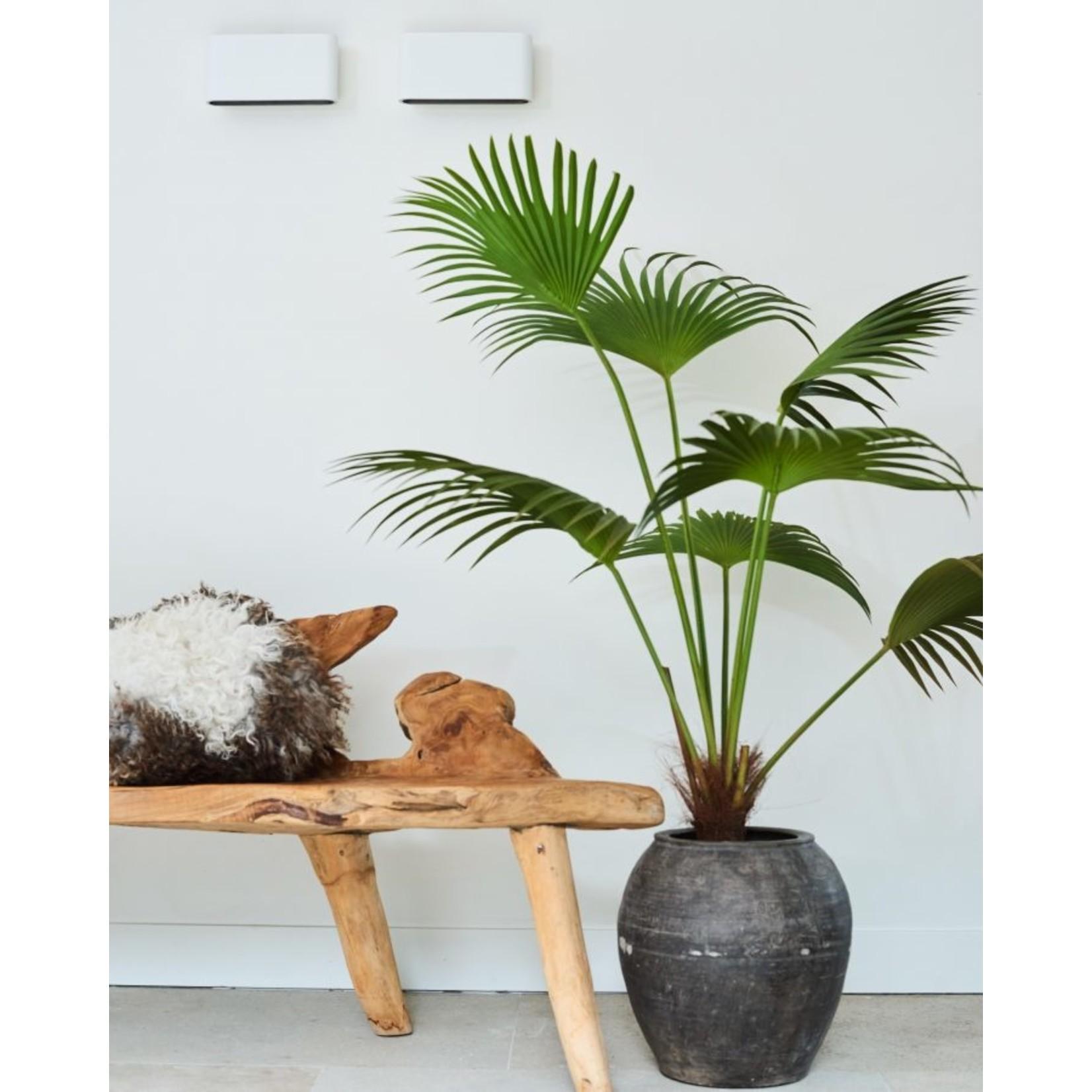 Silk-ka Palm Groen   140 cm