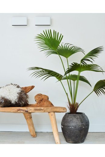 Silk-ka Plant Palm Green | 140 cm