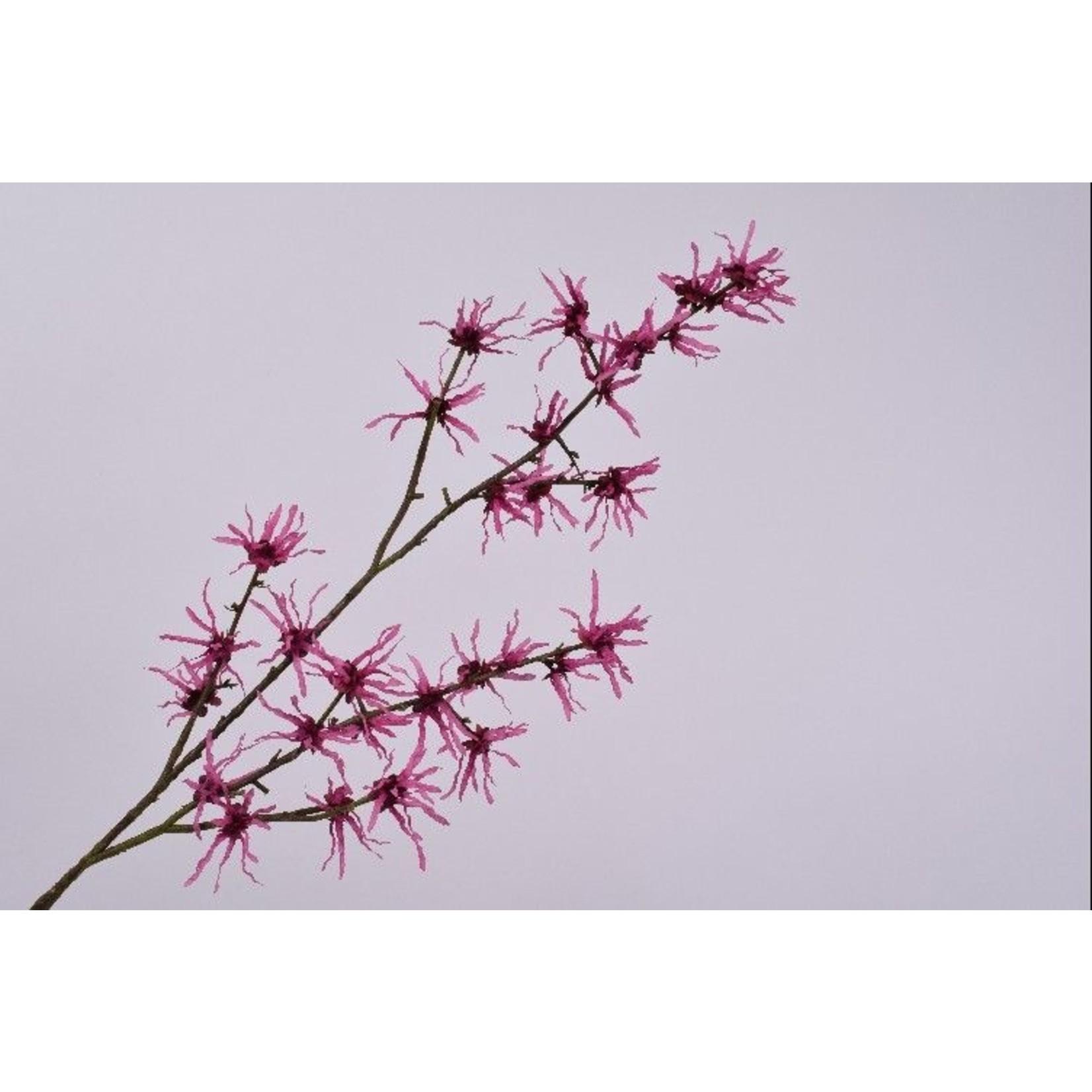 Silk-ka Hazel Branch Beauty | 119 cm