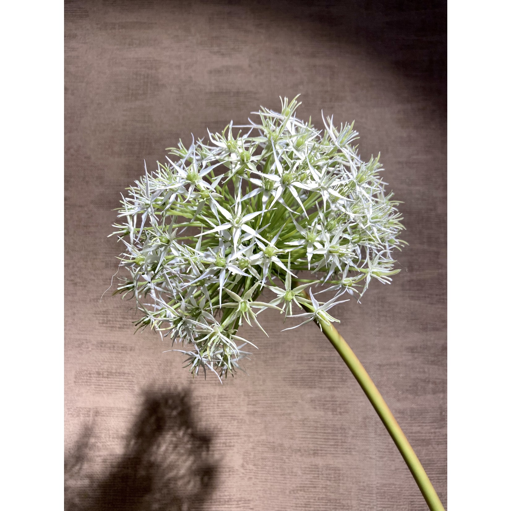Silk-ka Acier Allium Blanc   104 cm