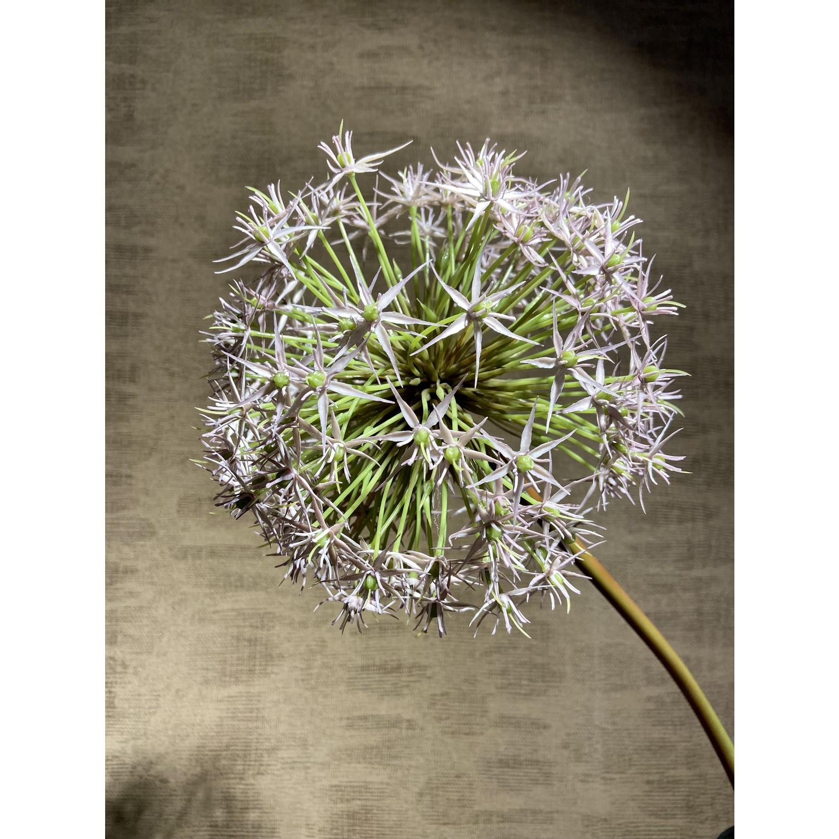 Silk-ka Acier Allium Violet   104 cm