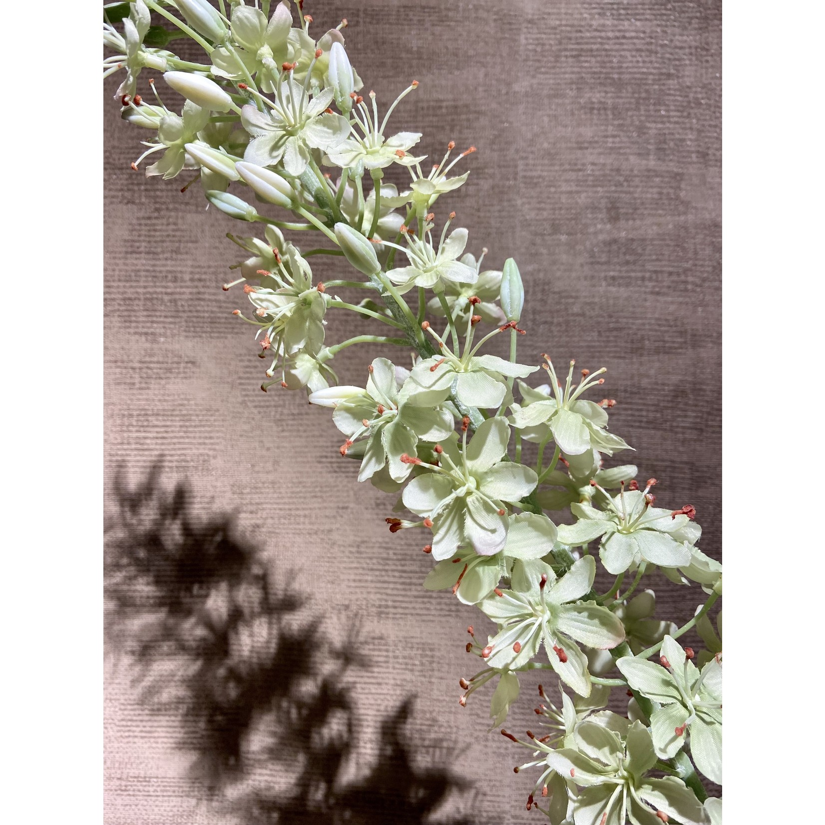 Silk-ka Eremurus Steel Groen   107 cm