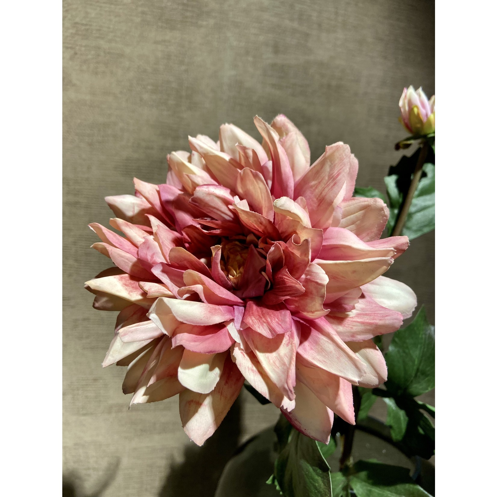 Silk-ka Dahlia Steel Pink | 75 cm