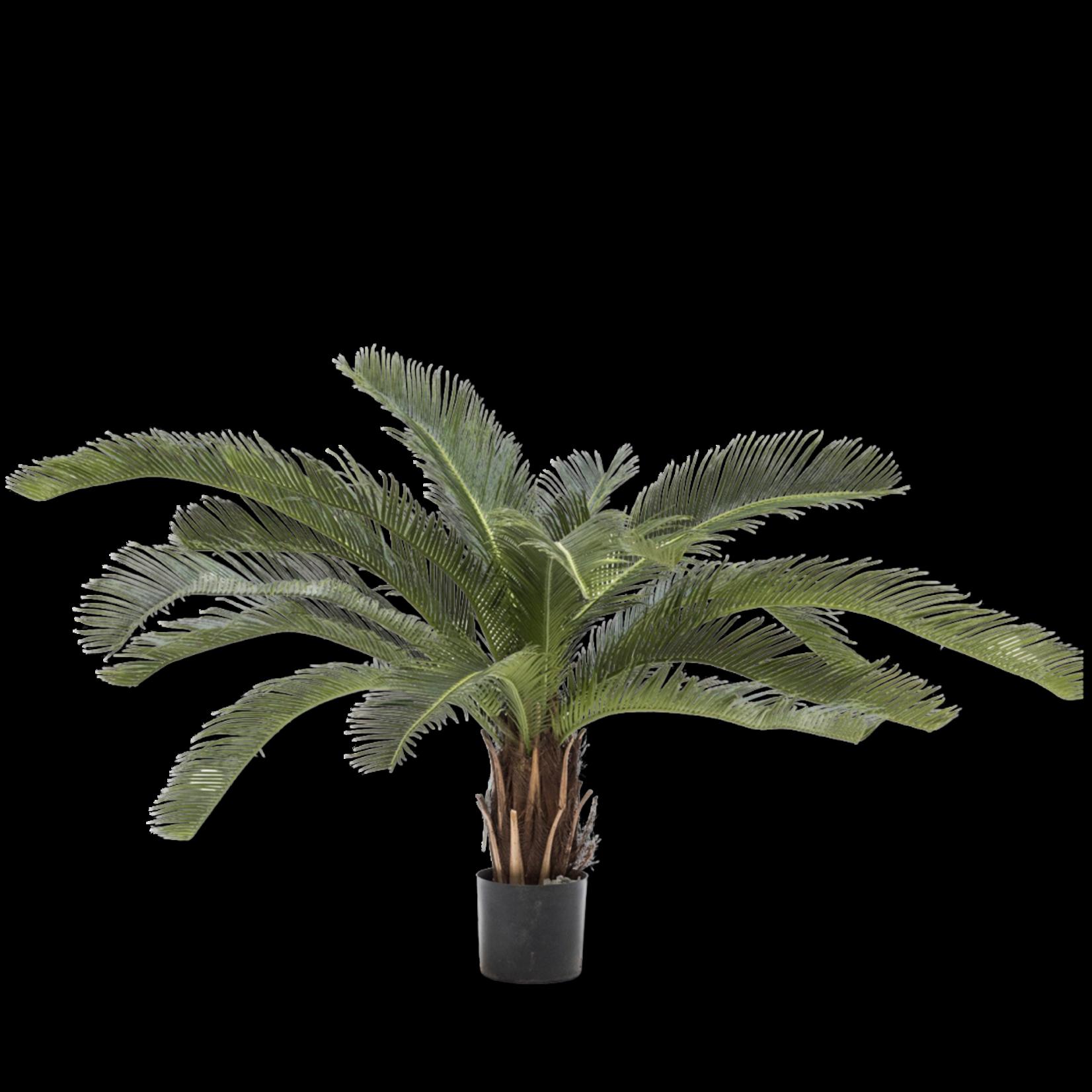 Plant Palm Green   50 cm