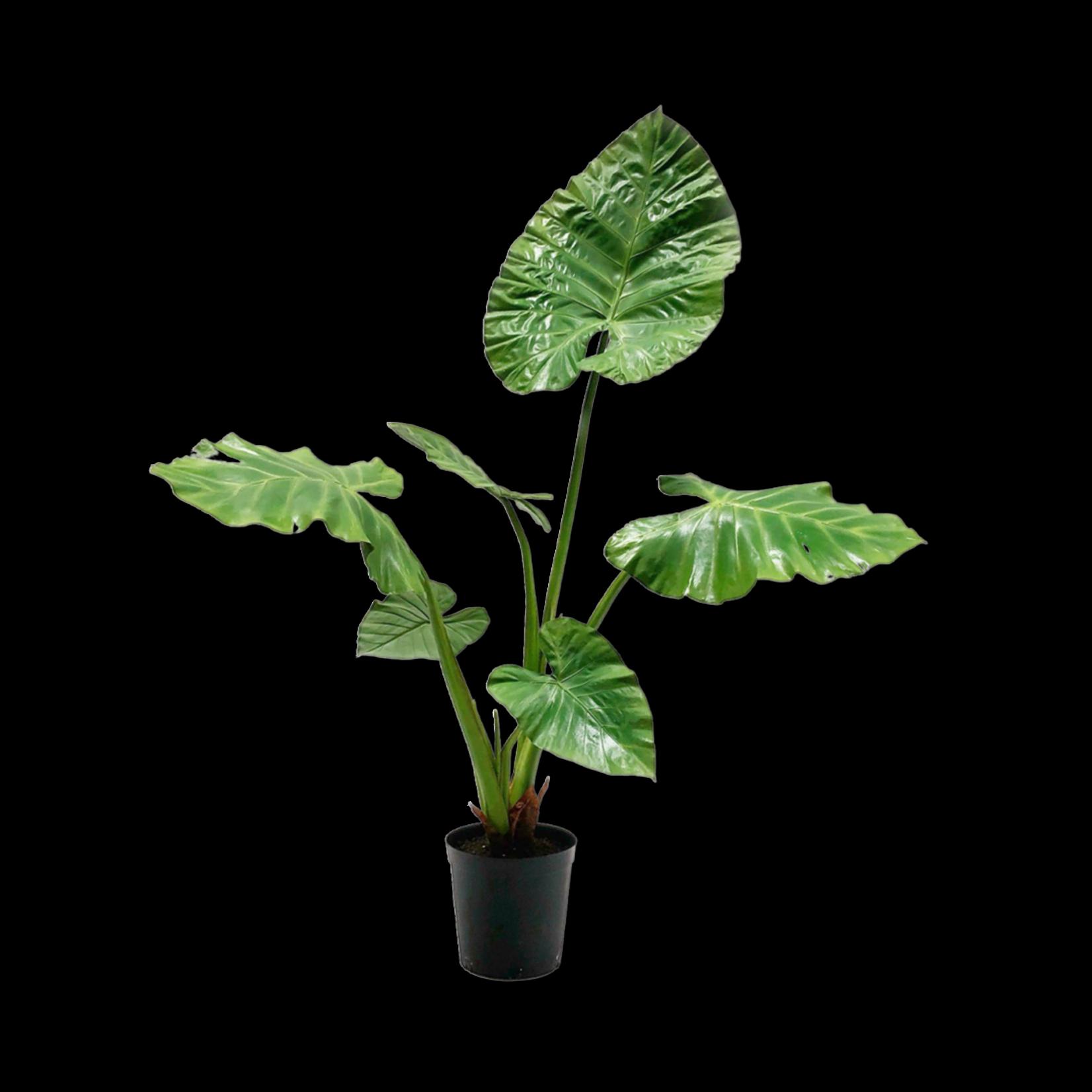 Silk-ka Alocasia Groen | 121 cm