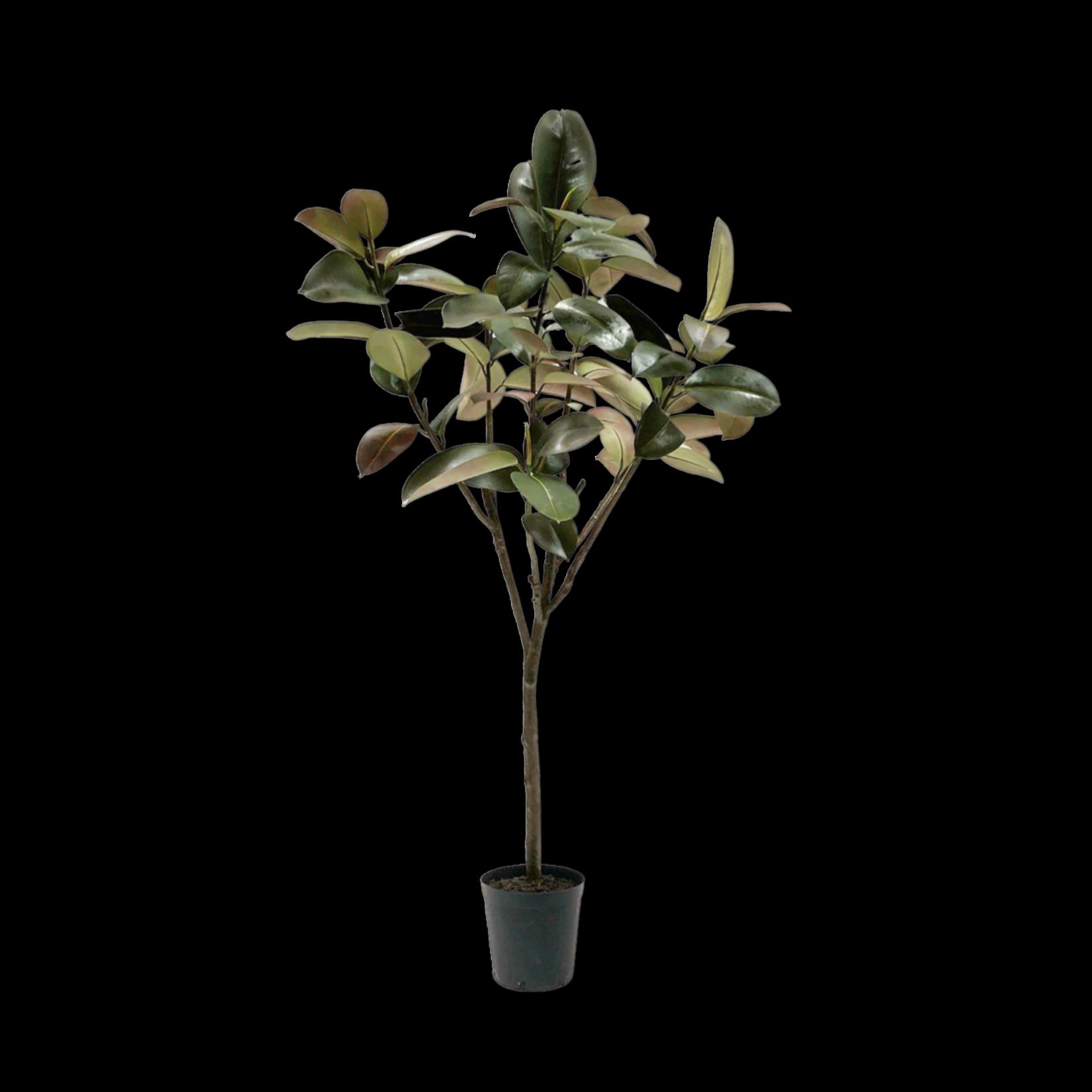 Silk-ka Ficus Groen | 198 cm