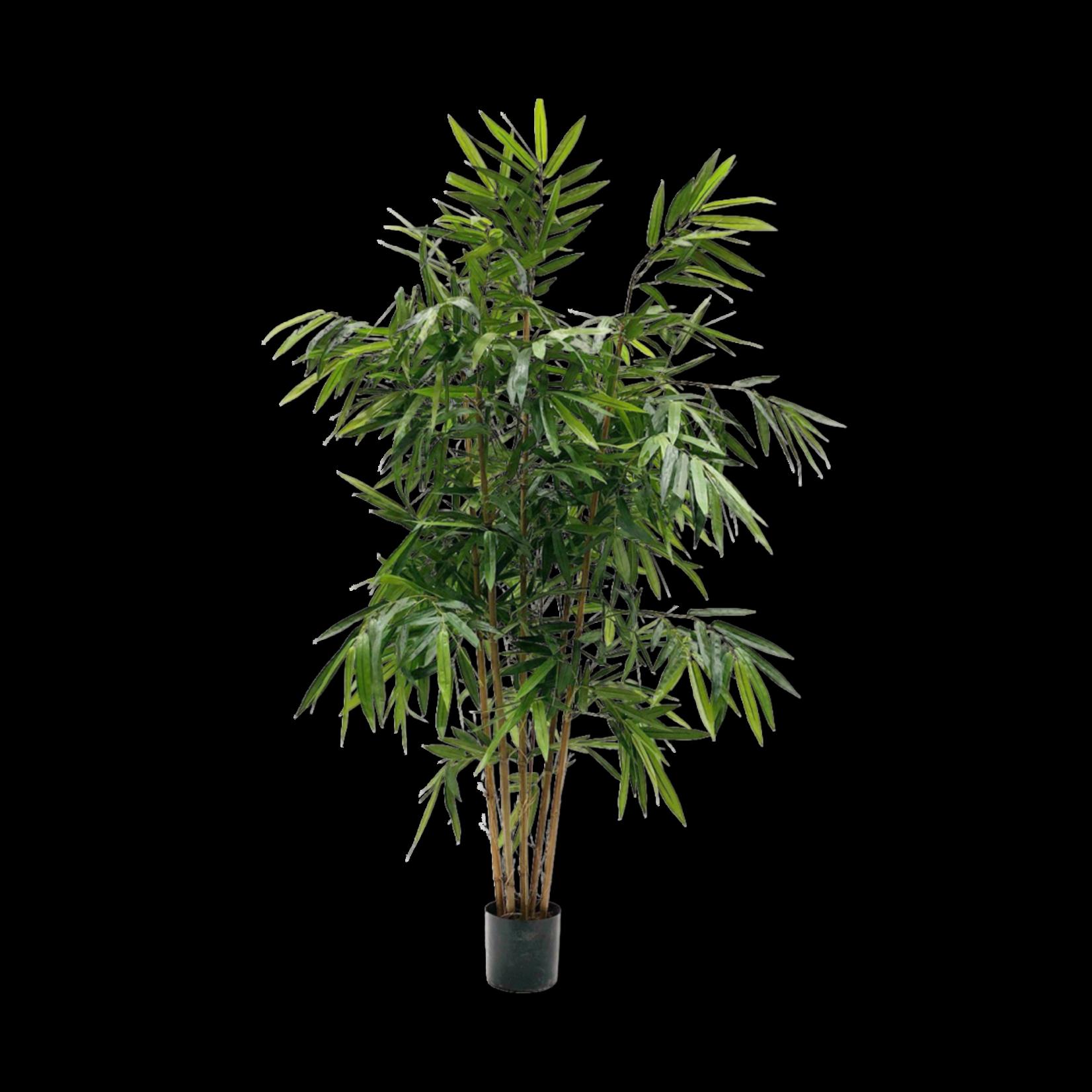 Silk-ka Bamboe Groen   183 cm