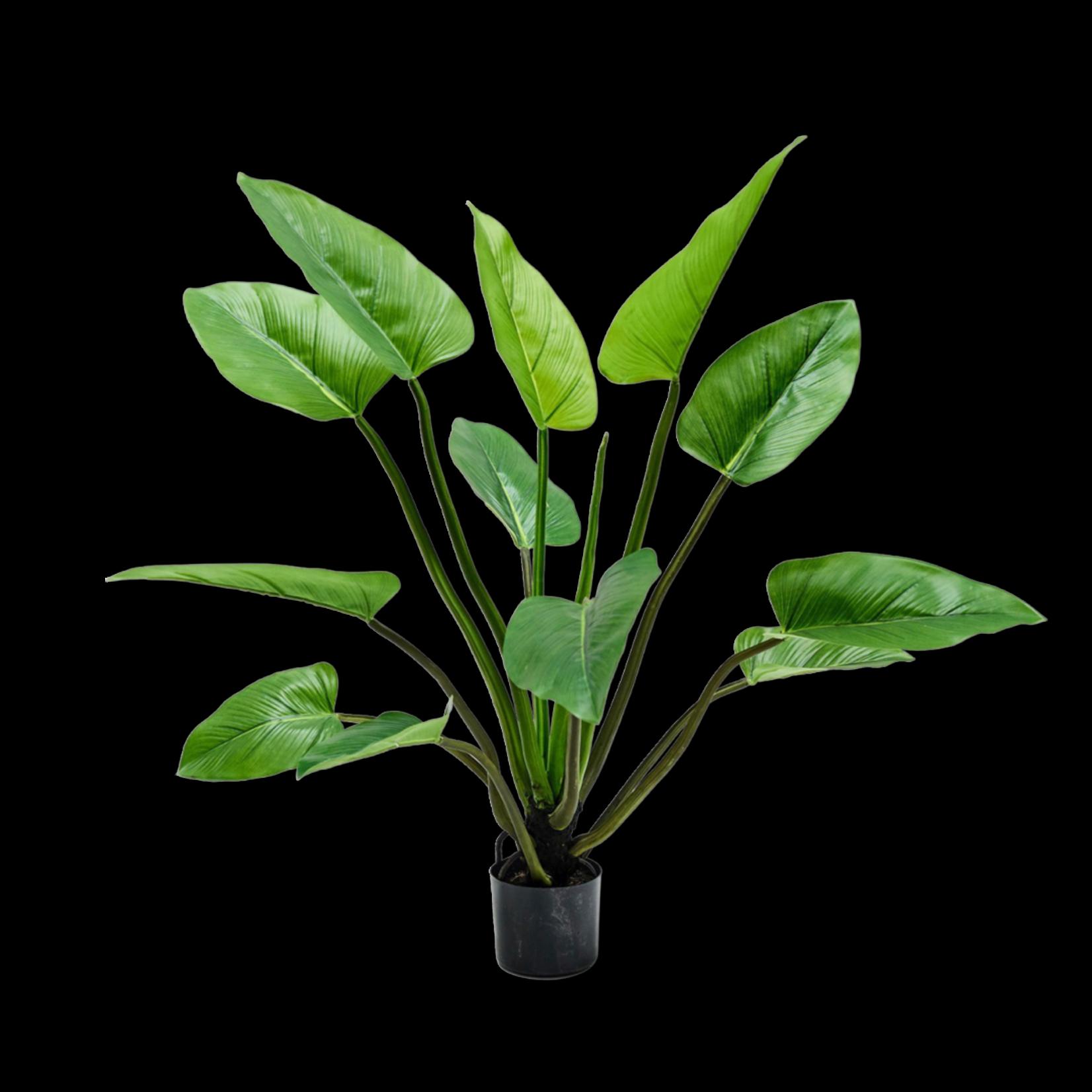 Silk-ka Alocasia Groen   122 cm