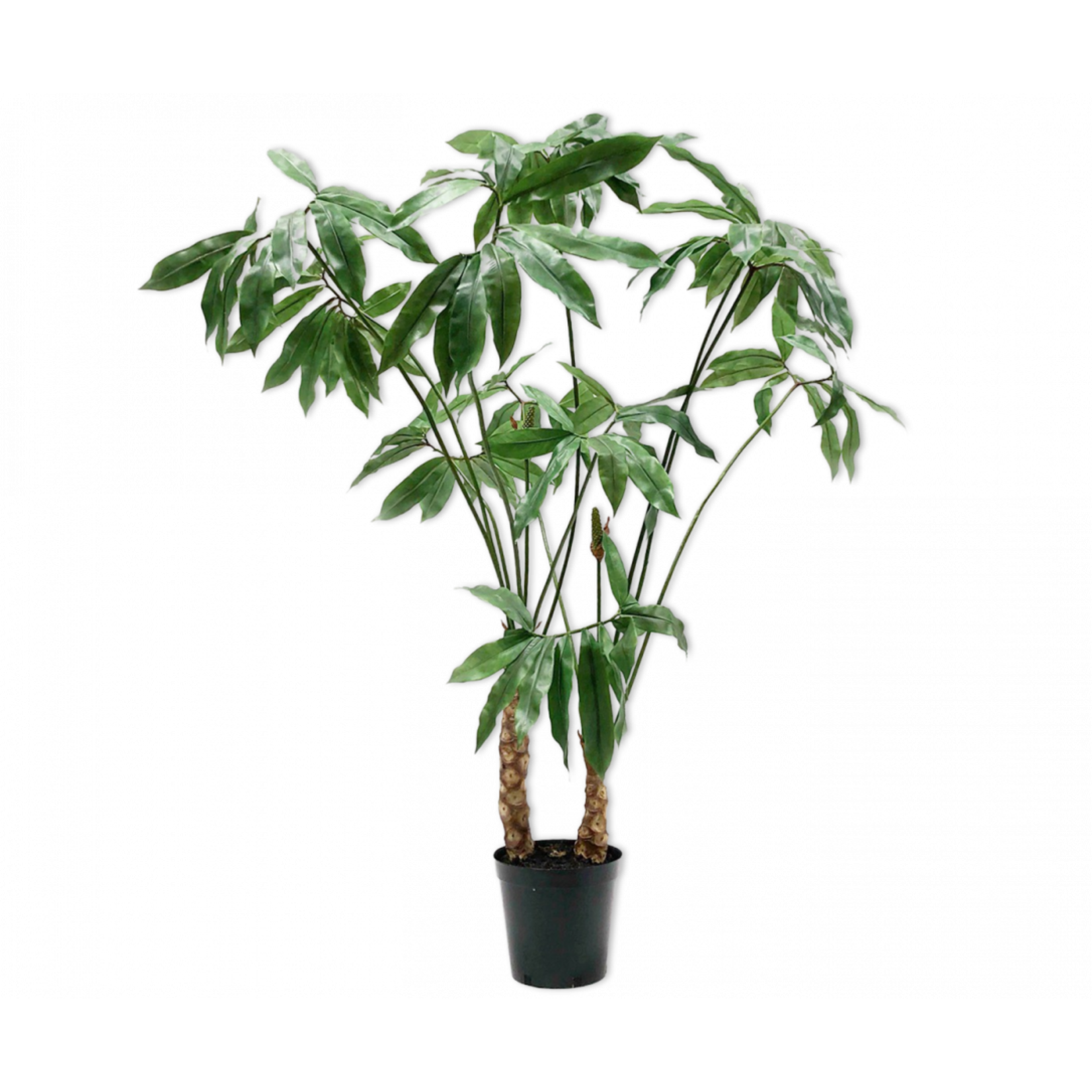 Silk-ka Plant Green   204 cm