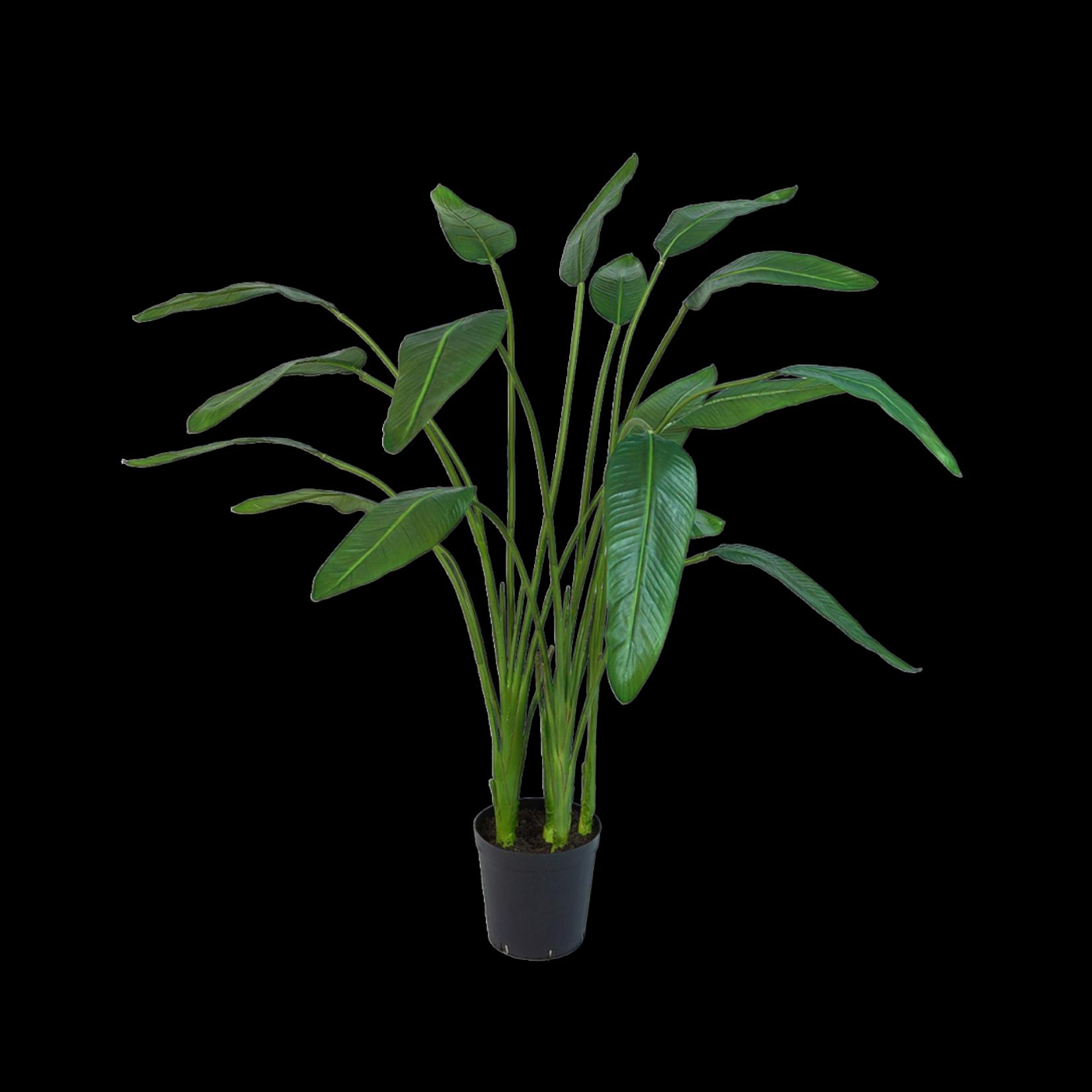 Silk-ka Strelitzia Groen | 178 cm