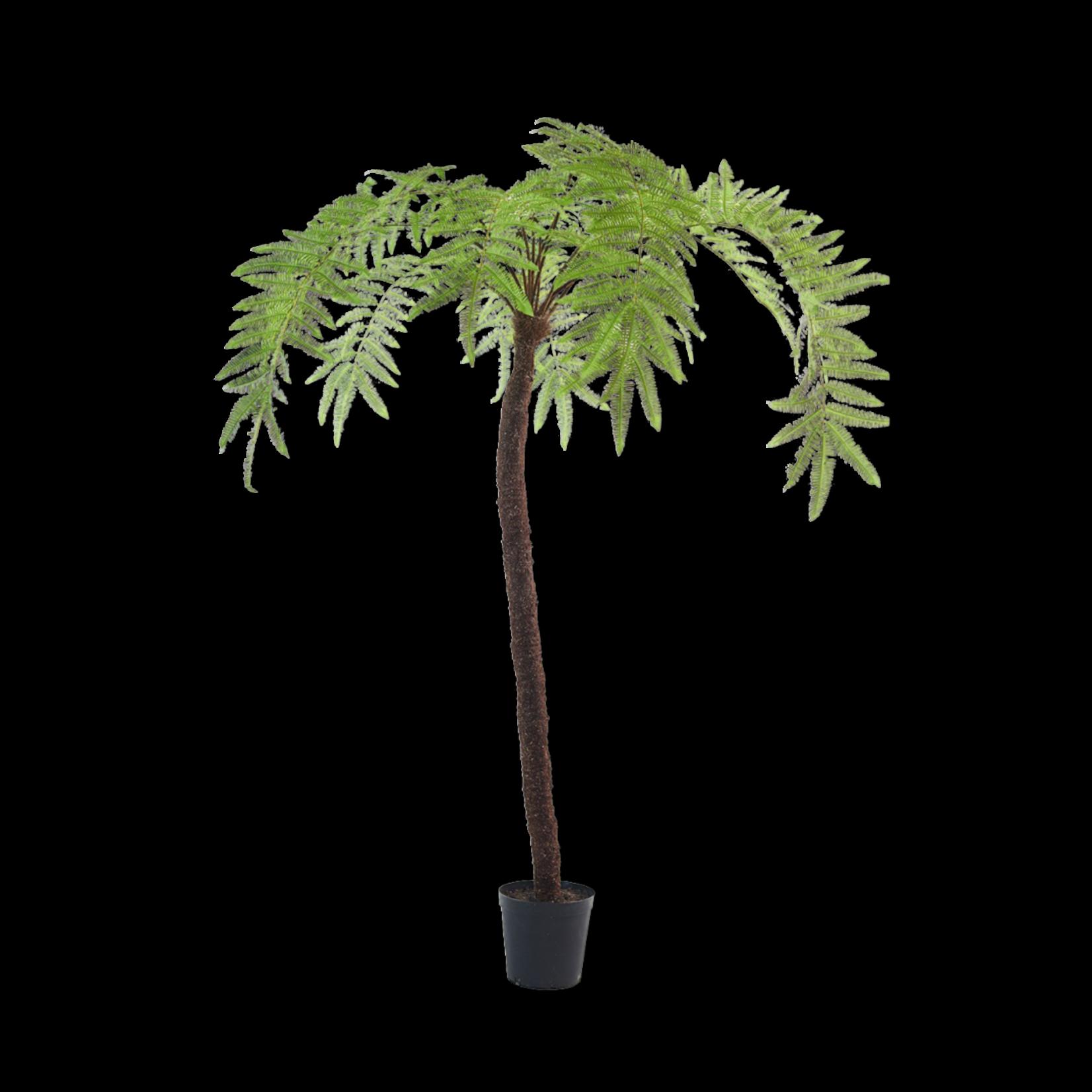 Silk-ka Fern Green   246 cm