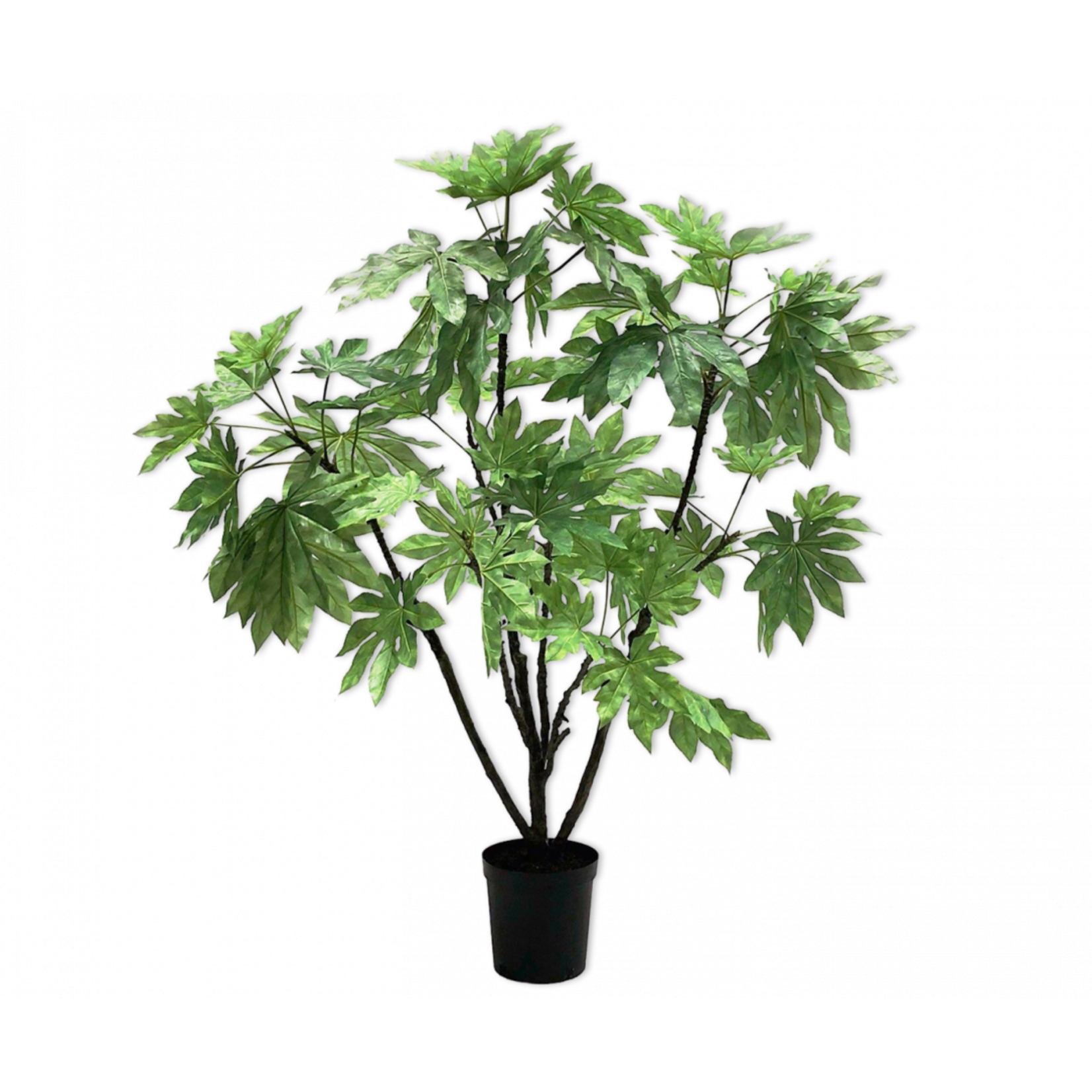 Silk-ka Fatsia Vert | 150cm