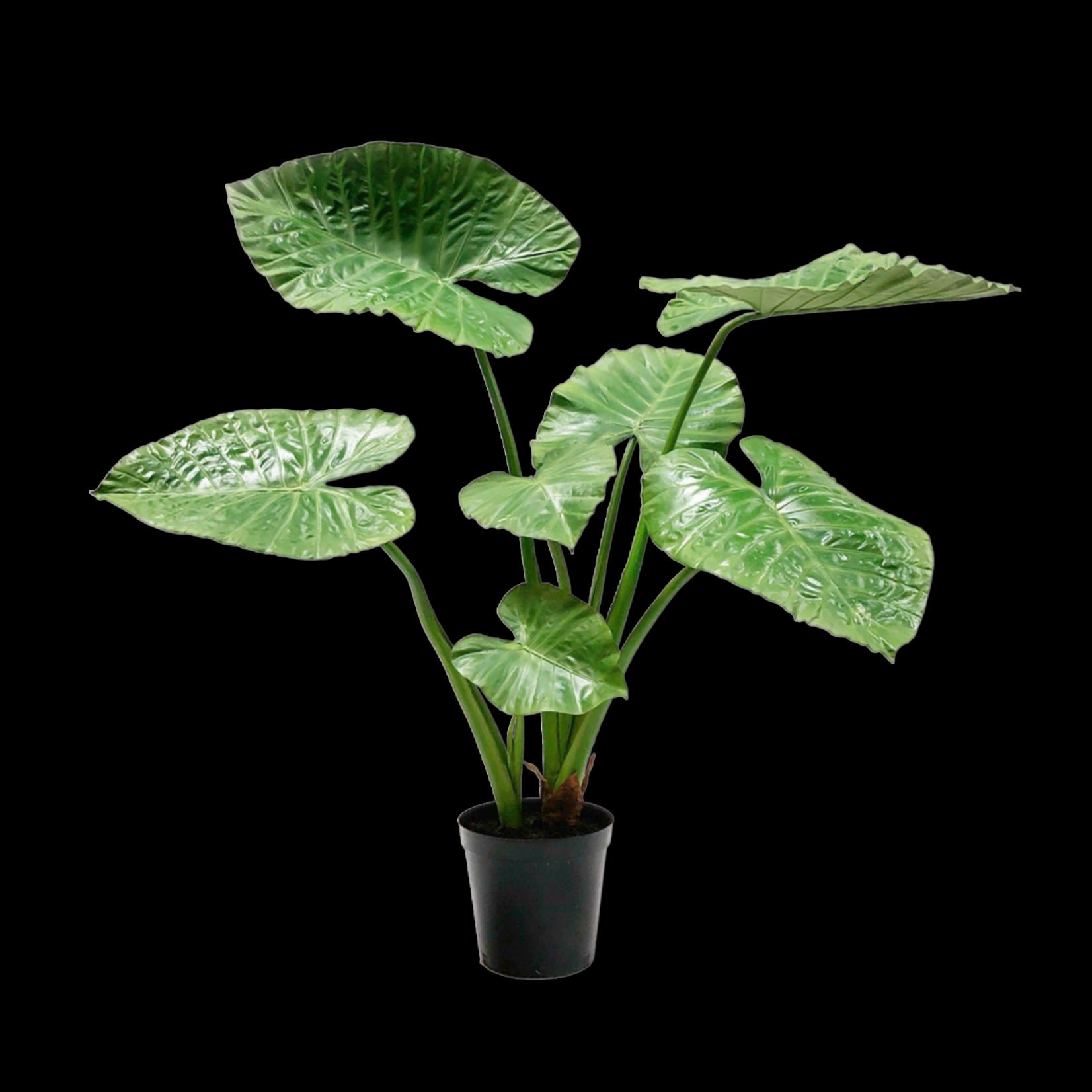 Silk-ka Alocasia Green | 124 cm
