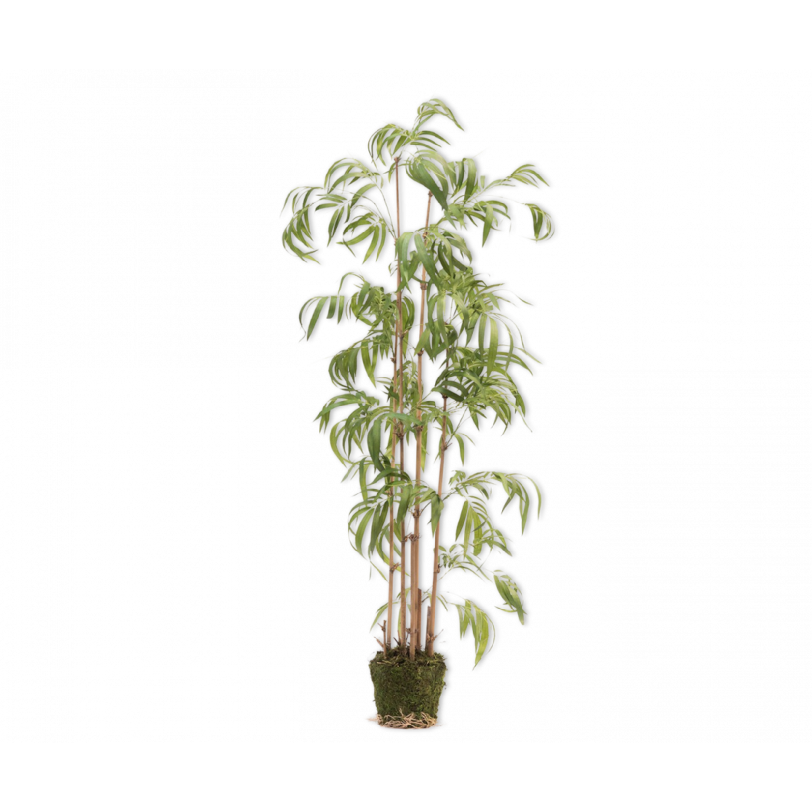 Silk-ka Bamboe Groen   165 cm