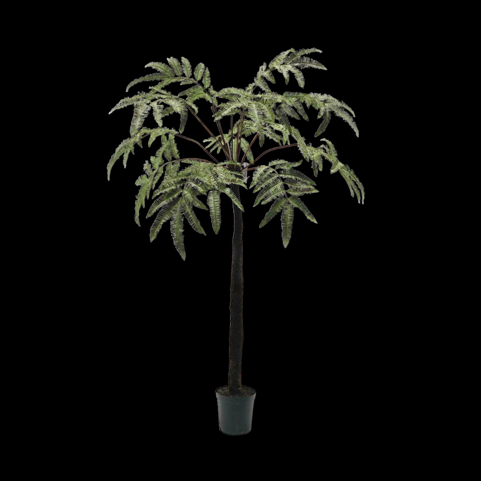 Silk-ka Vert fougère   183 cm