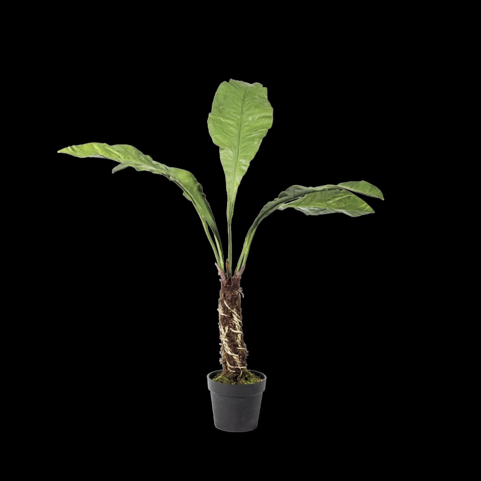 Silk-ka Varen Groen | 140 cm