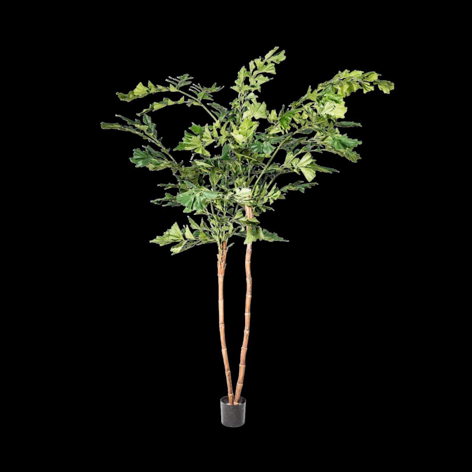 Silk-ka Palm Groen   240 cm